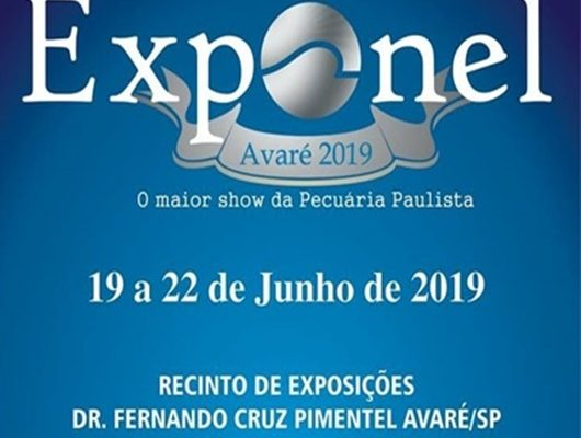 EXPONEL 2019