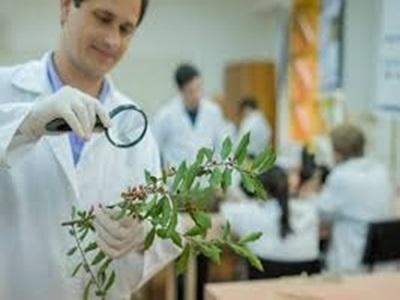 Ciências Biológicas (Licenciatura)